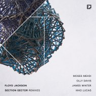 Floyd Jackson  - Section Sector (James Winter Remix)