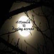 stiffywalsh - digging around (Original Mix)