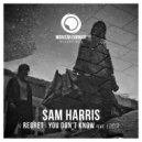 Sam Harris feat. Lucia - You Don\'t Know  (Original Mix)