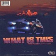 Young Passion & Skippa Da Flippa - What Is This (feat. Skippa Da Flippa) (Original Mix)