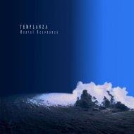 Mental Resonance - Liquid Night (Original Mix)