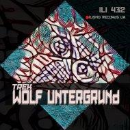Wolf Untergrund - Elemental Shift (Original Mix)