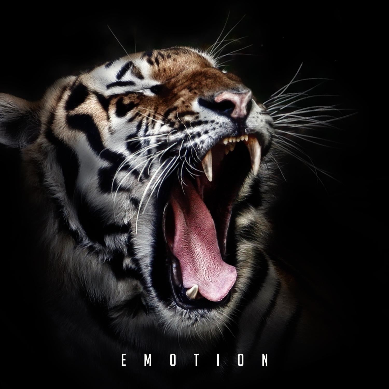 Soundsperale & Deepleasure - Emotion  (Original Mix) ()