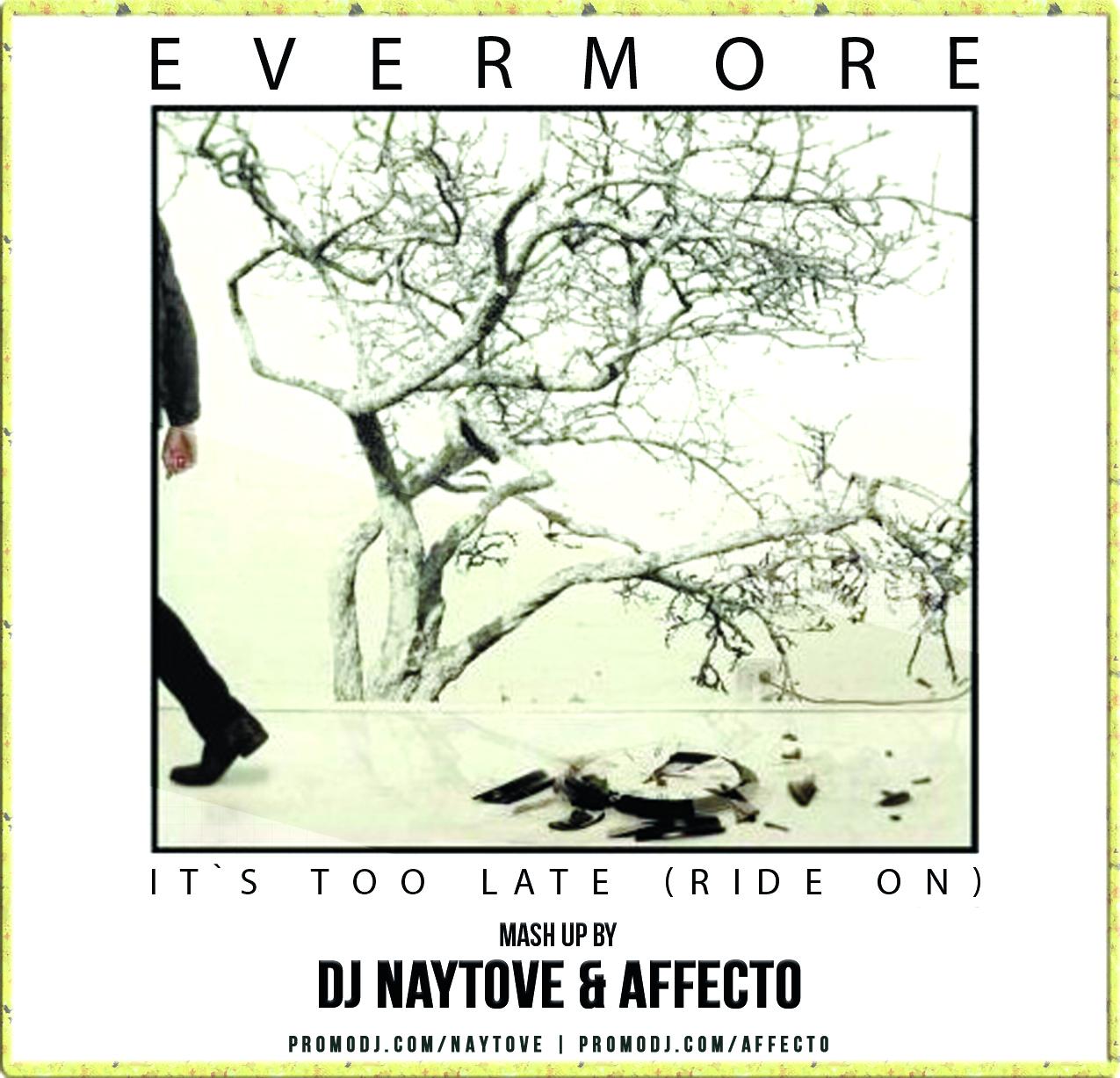 Evermore vs. Lakeshore & Charlie Valentine - It\'s Too Late (DJ Naytove & AFFECTO Mash Up)