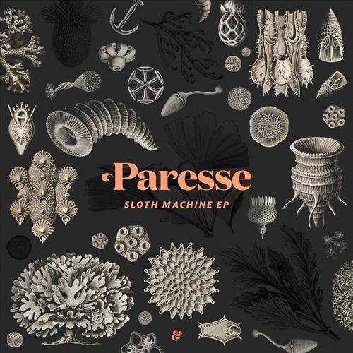 Paresse - Sloth Machine (Original Mix) ()