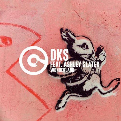DKS Ft. Ashley Slater - Wonderland (Da Lukas Electrofunk Extended Mix)