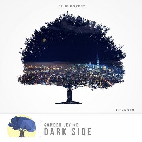 Camden Levine - Dark Side  (Extended Mix)