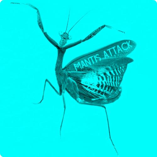 Dj Piloramos - Mantis attack ( )
