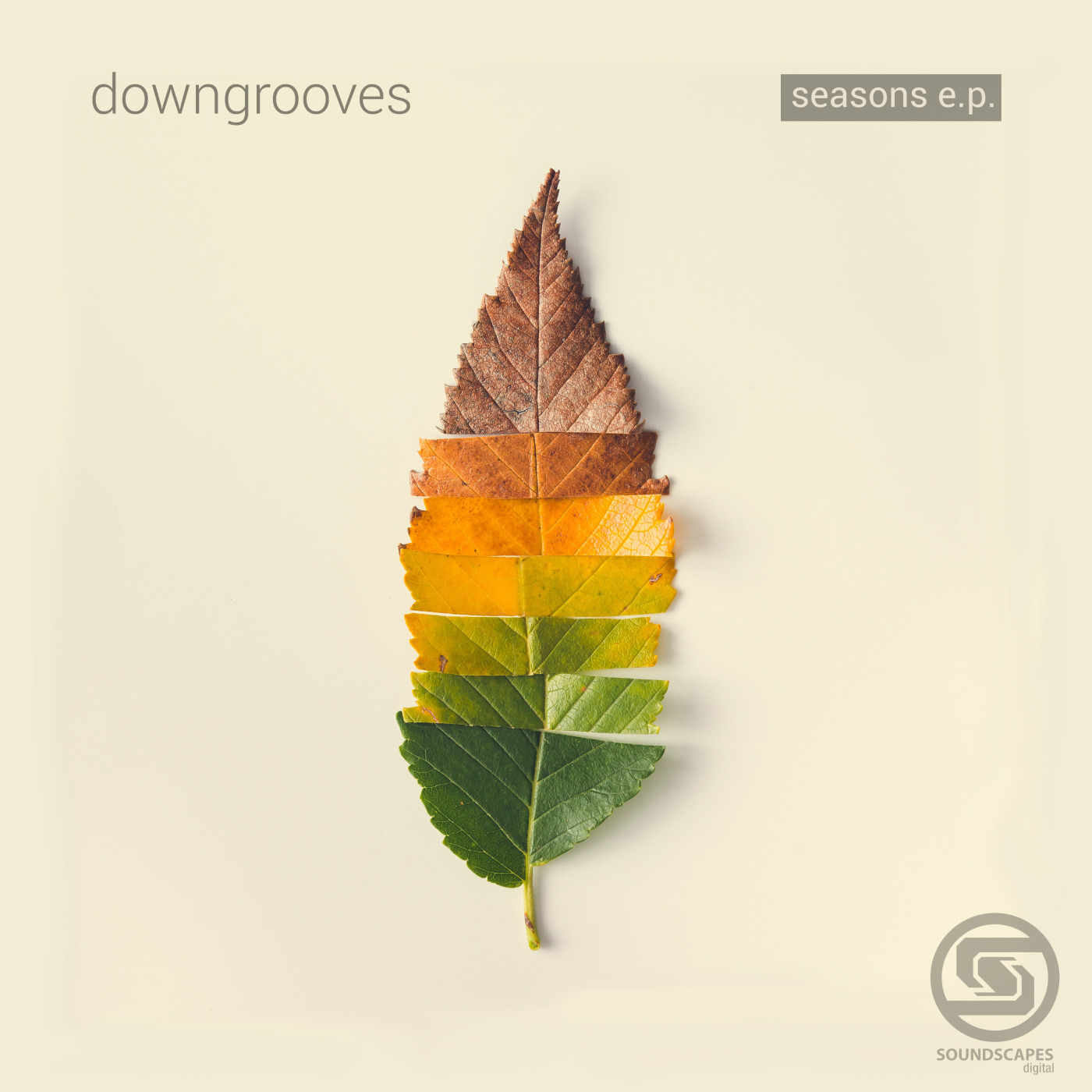 Downgrooves - Morning Never Comes (Original Mix)