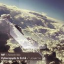 MF - Aerophobia (Original Mix)