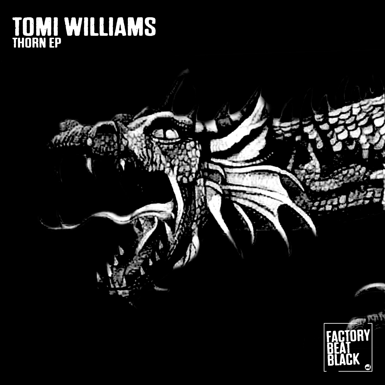 Tomi Williams - Anthrax (Original mix)