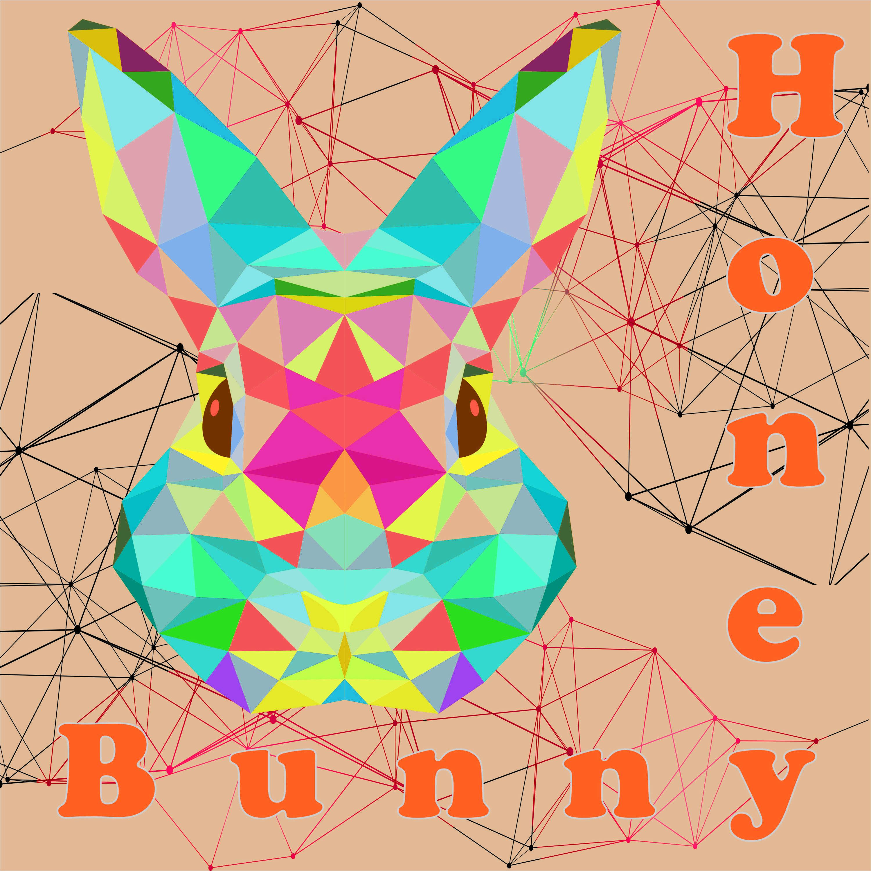 Honey Bunny - Take Off (Oziriz Remix)