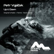 Petr Vojacek - Up & Down (David Surok Radio Edit)