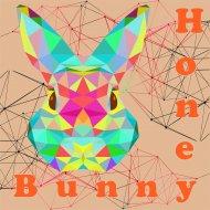 Honey Bunny - Take Off (Original mix)
