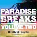 The Breakbeat Junkie & DJP - Freak Hop Part 3 (Original Mix)