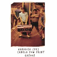 HardDisk (PE) - Canela Paw Print (Original Mix)