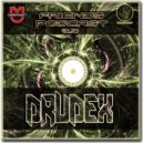 Drudex - Friends Podcast  Vol.148 ()
