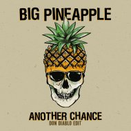 Big Pineapple - Another Chance (Don Diablo Extended Edit)