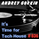 DJ Andrey Gorkin - It\'s Time For Tech House #036 ()