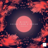Miyagi - Secrets  (Christopher Schwarzwalder Remix)