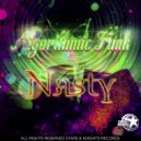 Algorithmic funk - Nasty (Original Mix)