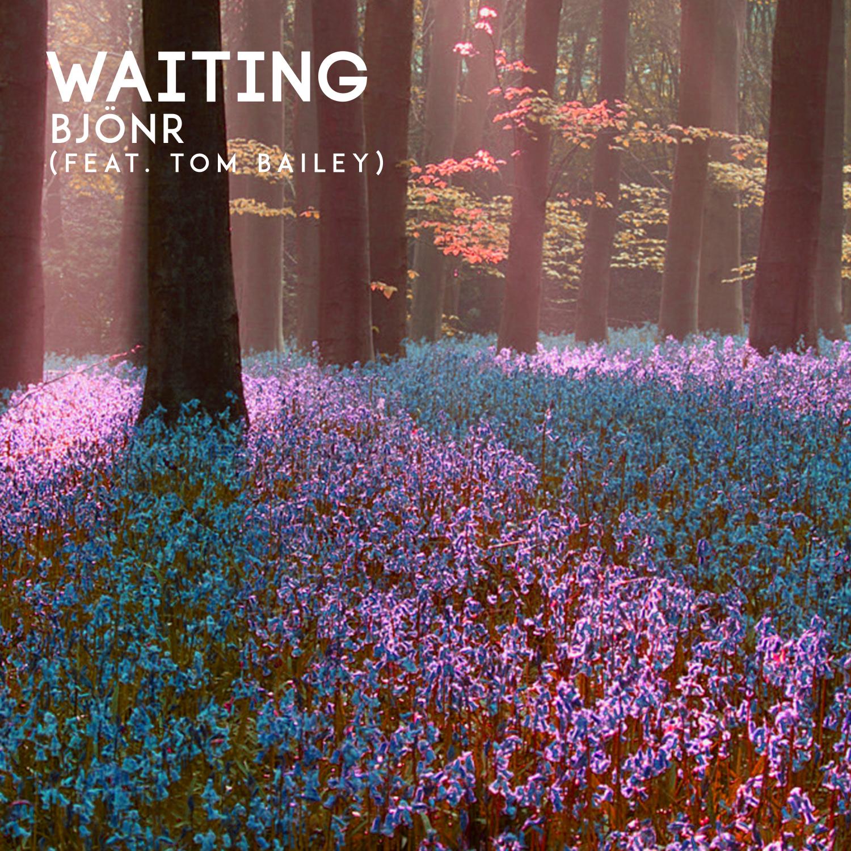 Bjonr & Tom Bailey - Waiting (feat. Tom Bailey) (Radio Edit)