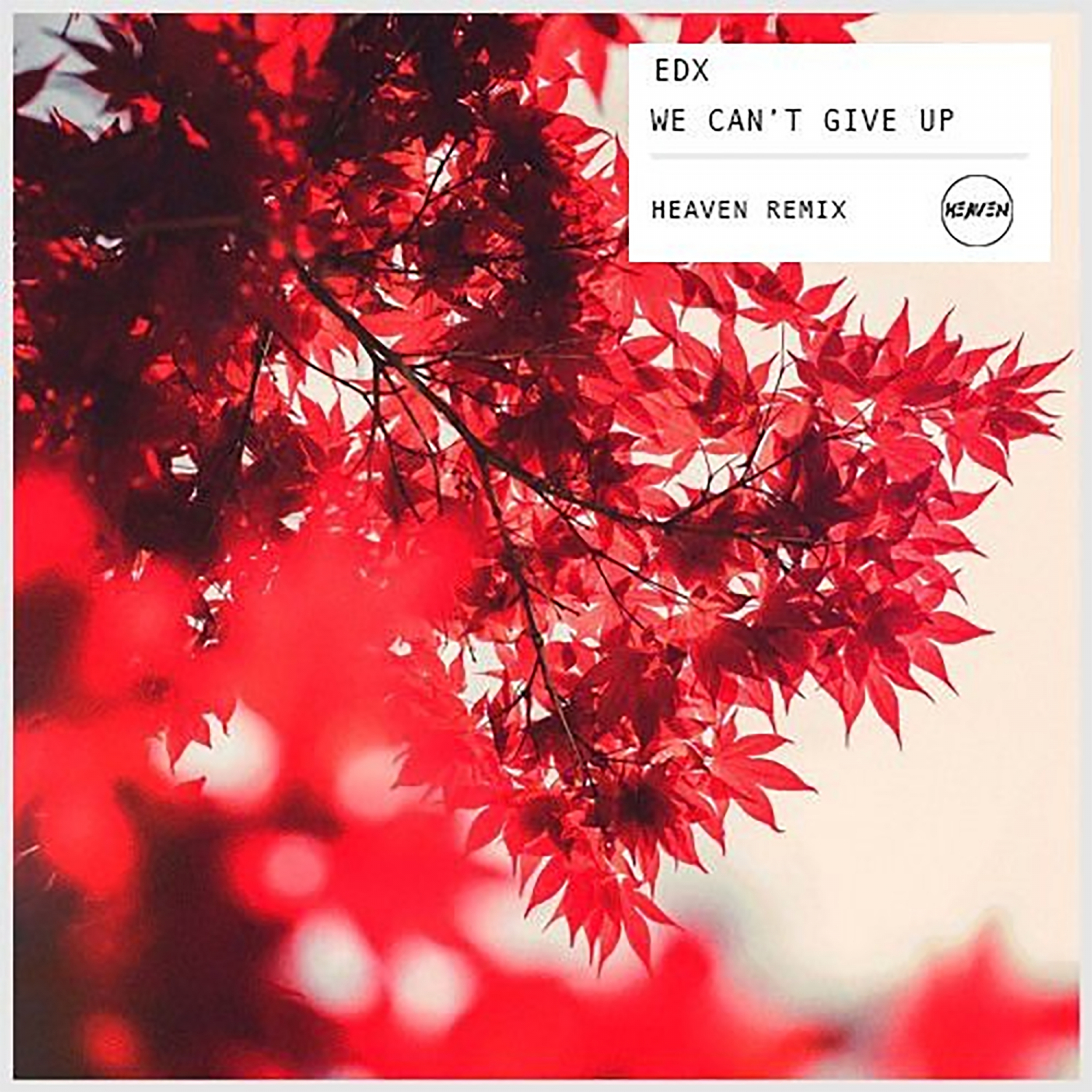 - We can\'t give up (Heaven Remix)