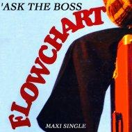 Flowchart - Ask the Boss (Remix Version)