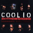 Coolio - Gangsta Paradise (Harmonic Rush Remix)