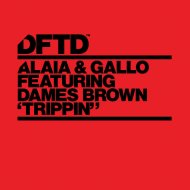 Alaia & Gallo feat. Dames Brown - Trippin\'   (P.o.L. Extended Mix)