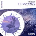 TUN3BOOK - If I Had Wings  (Extended Mix)