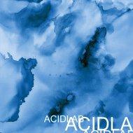 Acid Lab - Rude Riddim (Original Mix)