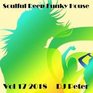 DJ Peter - Soulful Deep Funky House Vol 17 2018 ()