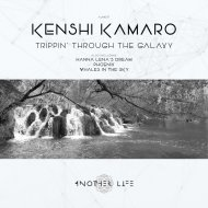 Kenshi Kamaro - Whales in the Sky (Original Mix)