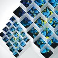 Bluetech - Crystalline Forms (Gaudi Remix)