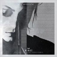Wingz - Shattered Perception (Phentix Remix)