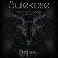 Sulekose & Ra Root - Purple Stuff  (Original Mix)