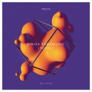 Sinisa Tamamovic - Split Minds (Original Mix)