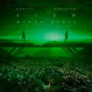 CORSAK & Robinson - GLOW (Wiwek Remix)