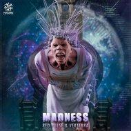 Red Pulse & Vertebra - Madness (Original Mix)