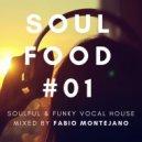 Fabio Montejano - Soul Food #01 / Soulful & Funky Vocalhouse ()