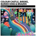 Colour Castle, Birdee, Buried King & Brazen - Wasted Funk (Original Mix)