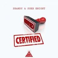 Shandy & Sukh Knight - Astral Gate (Original Mix)