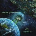 NZEN7 - Holographic Universe (Original Mix)