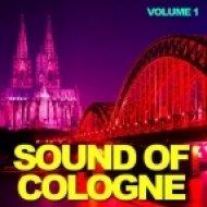 Various Artists - Wollin DJ-Mix ()