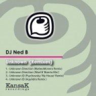DJ Ned B, Matteo Monero  - Unknown Direction  (Matteo Monero Remix)