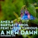 Amex & Bartlett Bros. feat. Lizzie Curious - - A New Dawn ()