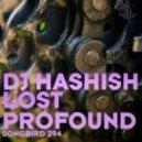 DJ Hashish - Lost ()