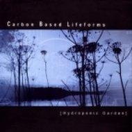 Carbon Based Lifeforms - Central plains ()