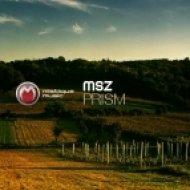 MSZ  - Existo  (Original Mix)